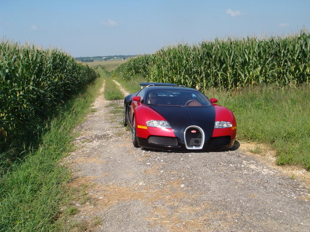 mercedes benz blog 2010 in formula 1 mercedes grand prix best car review. Black Bedroom Furniture Sets. Home Design Ideas